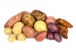Valley-Spuds-Potato-Varieties