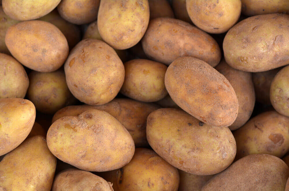 Red Potatoes Vs White Potatoes